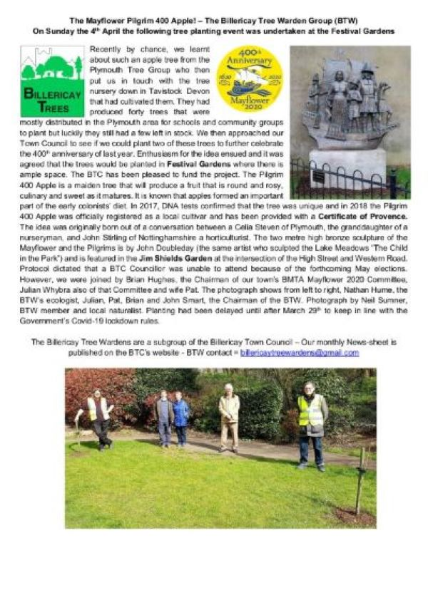 Tree Wardens Pilgrim 400 Apple Tree article